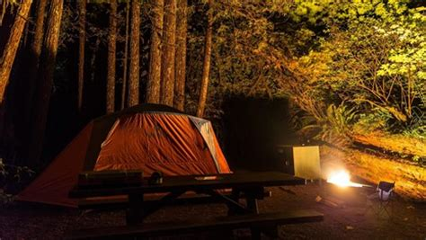 Redwood National and State Parks (U
